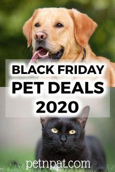 Best Black Friday Deals For Pets 2020 | Dogs, Cats, Aquarium Fish… #blackfriday #pets #petdeals #animals #blackfridaydeals #dogs #cats #fish #rabbits #hamsters #chickens