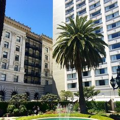 Fairmont SF Wedding Planning • OUI Weddings & Events @oui_events