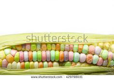 Find Fresh Corn Colorful Isolated On White stock images in HD and millions of other royalty-free stock photos, illustrations and vectors in the Shutterstock collection. White Stock Image, Sweet Corn, Agriculture, Natural Health, Nutrition, Colorful, Diet, Fresh, Vegetables