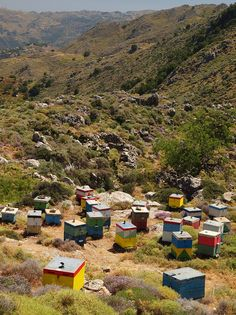 Bee Boxes in Crete (OR my future house).