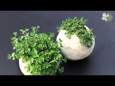 How to make really cool round ball shaped planters with cement. This tutorial for a DIY cement balloon planter is actually easy and so much fun! Cement Flower Pots, Diy Concrete Planters, Concrete Garden, Diy Planters, Diy Ballon, Succulent Soil, Concrete Crafts, Garden Projects, Easy Diy