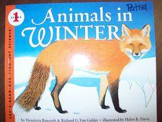 Chalk Talk: A Kindergarten Blog: Learning about animals in winter