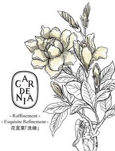 #Diptyque Gardenia