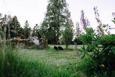 Auf dem Äckerhof kann man die Natur genießen und einmal so richtig abschalten.