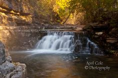 Nature, Landscape, Cove Springs Park, Frankfort, Kentucky, Photography, Digital Expressions