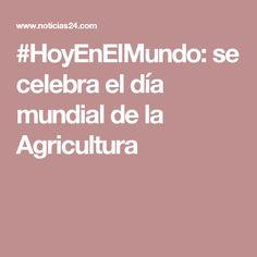 #HoyEnElMundo: se celebra el día mundial de la Agricultura