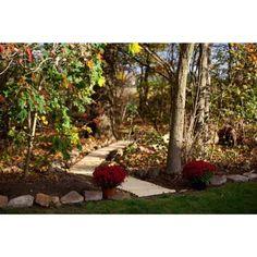 Shop Pressure Treated Pine Outdoor 3 Foot Wide Roll Up Walkway - On Sale - Overstock - 15295911 Landscaping Around Patio, Garden Landscaping, Lawn Edging, Garden Edging, Cedar Lumber, Roll Up Design, Red To Blonde, Garden In The Woods, Western Red Cedar