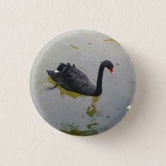 Black Swan Pinback Button - #customizable create your own personalize diy