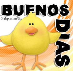 Buenos Dias!