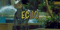 What amazes me is that Echo stood up for Blue, even though Blue hates her. I just realized that...