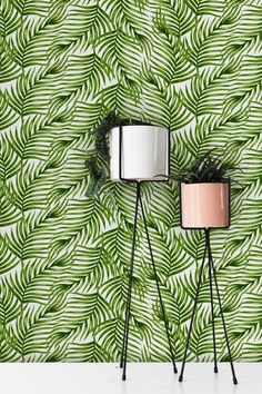 Green Palm Leaf Removable Wallpaper | COLORAYdecor.com