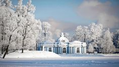 Russia Saint Petersburg buildings forests nature