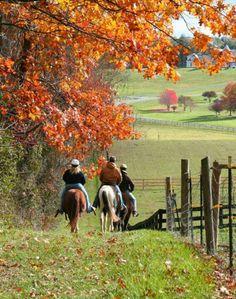 .horseback riders