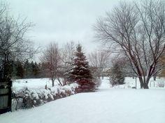 Winter 2013 Feb