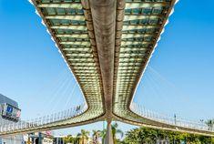 Santiago Calatrava's Chords Bridge for pedestrians in Petah Tikva. Photo via Shutterstock.com