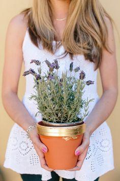 DIY Gold Leaf Pots Leaf Projects, Diy Projects, Project Ideas, Gold Diy, Terracotta Pots, Clay Pots, Gold Leaf, Flower Pots, Beautiful Flowers