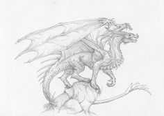Just another Dragon by Sheranuva on DeviantArt Creature Drawings, Animal Drawings, Art Drawings, Fantasy Creatures, Mythical Creatures, Dragon Anatomy, Dragon Poses, Gargoyle Tattoo, Dragon Coloring Page
