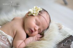 infant photography ideas | ... » Newborn Baby Portraits » Newborn Poses and Ideas for Pinterest