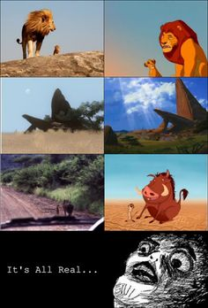 I laugh every time with this...Lion King scenes