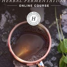 We are so excited to share our newest herbal course! 🌿 Our Herbal Academy teachers have come together to provide you with in-depth written discussions and video tutorials about every aspect of herbal fermentation. Whether you are interested in creating delicious beers and mead to share with friends and family or are looking for ways to expand your probiotic routine through kombucha, water kefir, or fermented foods, The Craft of Herbal Fermentation Course will walk you through step by step… Home Remedies, Natural Remedies, Water Kefir, Herbs For Health, Healing Herbs, Fermented Foods, Mead, Kombucha, Herbal Medicine