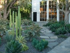 We've rounded up some of the best xeriscaping resources for lawn makeovers that are easy on the planet. via @goop