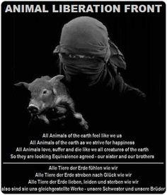 ALF - ANIMAL LIBERATION FRONT WORLWIDE - WEB PAGE IN ENGLISH LANGUAGE