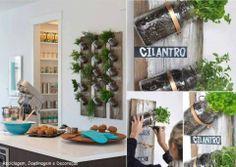 Love this herb kitchen idea!