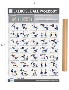 Fitwirr Exercise Ball Workout Poster for Women 19 X 27 - FITWIRR SHOP