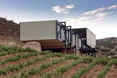 Encuentro Guadalupe Winery,© Edgar Lima