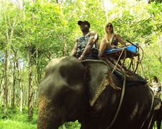 Thailand Holiday Deals to Bangkok or Phuket Islands from South Africa or any International Travel Destination. Inclusive Holidays, Couples Vacation, Holiday Deals, Phuket, Bangkok, South Africa, Islands, Vacations, Travel Destinations