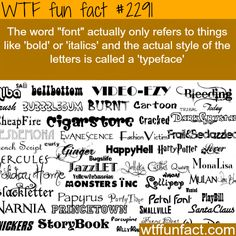 """The Word """"font"""" and """"typeface"""" -WTF funfacts"""