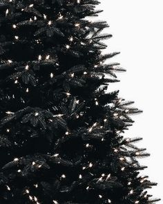 Intergalactic Black Christmas Tree Twilight Black Christmas Tree I go with tradition, if I'm going to celebrate Christmas it's going to be a real tree! No fake trees will be in my house! Black Christmas Trees, Christmas Time Is Here, Christmas Mood, Noel Christmas, Merry Little Christmas, Christmas Lights, Christmas Ideas, Xmas Trees, Burlap Christmas