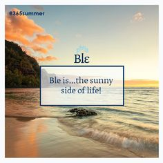 Good morning everybody! Find sunny fashion ideas at www.ble-shop.com Good Morning, Sunnies, Fashion Ideas, Shop, Life, Buen Dia, Bonjour, Sunglasses, Bom Dia