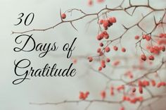 30 Days of Gratitude Challenge, JOIN ME! Days Until Christmas, Wood Tree, Winter Garden, 30 Day, Brown And Grey, Gratitude, Stampin Up, Stuff To Do, Direct Sales