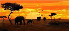 Backdrop : African elephant  #lionkingparty #safari #africa