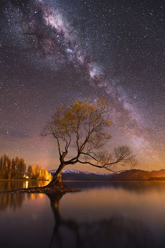 ☆ Wanaka Way.。Lake Wanaka, New Zealand :→: Photographer Dylan Gehlken ☆