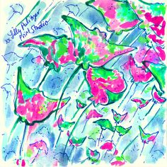 Rays the roof. #Lilly5x5