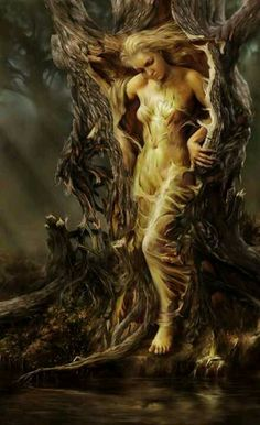Steve De La Mare ~ Digital Fantasy painter Dryad - A dryad is a tree nymph, or female tree spirit, in Greek mythology. In Greek drys signifies Magical Creatures, Fantasy Creatures, Fantasy Kunst, Fantasy Art, Fantasy Trees, Mystique, Mythological Creatures, Gods And Goddesses, Goddesses Greek
