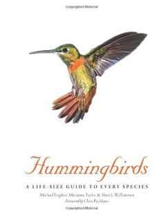 Hummingbirds von Michael Fogden, http://www.amazon.de/dp/1782400893/ref=cm_sw_r_pi_dp_PXj3tb0H8XH8N