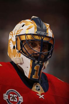 Photo galleries featuring the best action shots from NHL game action. Hockey Goalie, Hockey Teams, Ice Hockey, Hockey Stuff, Baby Tigers, Tiger Cubs, Tiger Tiger, Bengal Tiger, Panthers Team