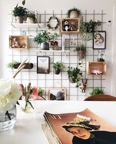 Gardening Archives - My Amazing Things Study Room Decor, Cute Room Decor, Room Ideas Bedroom, Bedroom Decor, House Plants Decor, Plant Decor, Home Office Decor, Diy Home Decor, Aesthetic Room Decor