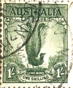Australian postage stamp featuring the Lyre Bird Rare Stamps, Old Stamps, Vintage Stamps, Postage Stamp Art, Going Postal, Australian Birds, Mail Art, Stamp Collecting, My Stamp