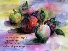 Apples Psalm 17:8 Gloss Ceramic Tile by NorthernReExposure on Etsy Watercolors by Mara
