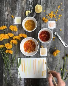 How to Make Watercolor Paint with Petals // Rebecca Desnos  #naturaldye #watercolors