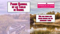 Tablas de Daimiel Parque Nacional National Parks, Boards, Paths, Naturaleza, Activities