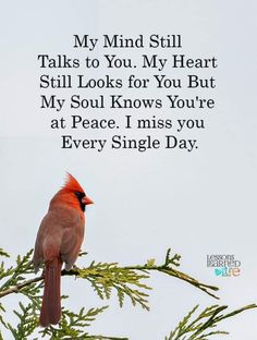 Missing Dad In Heaven, Dad In Heaven Quotes, Miss You Dad Quotes, Dad Quotes From Daughter, I Miss You Dad, Quotes To Live By, Son Quotes, Status Quotes, Wise Quotes