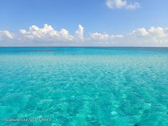 A day to take your breath away | Yesterday was a glorious day at Stingray City in Grand Cayman