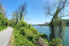 One more shot from the #Capitalcrescenttrail. I feel so peaceful along the water. Hi #potomacriver  : @skenigsberg #igdc #Georgetown #exposeddc #acreativedc #alongthewater #running by wethepeopledc