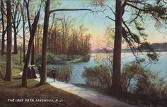 NJ-The-Lake-Path-Lakewood-New-Jersey-vintage-view-Oarsman-Postcard-1905