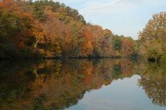 7) Black Warrior River—Alabama THREAT: Coal mining AT RISK: Drinking water quality and fish and wildlife habitat The Black Warrior River is a valuable resource for drinking water, recreation, fishing, and rare fish and wildlife. However, the river's Mulberry Fork is threatened by the Shepherd Bend Mine, a 1,773 acre coal mine which would discharge polluted wastewater only 800 feet from a major drinking water intake. To mine the proposed area, Drummond Company must obtain leases from prop...